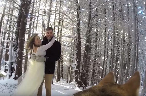 El perro es el encargado de filmar su boda