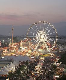 Wayne County Fair!  (picture stolen from a different county fair--but you get the idea)