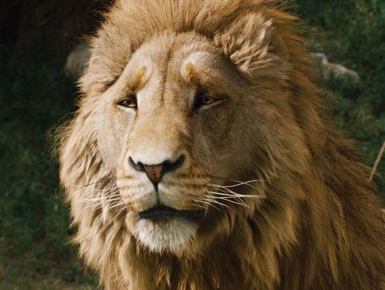 Aslan (Liam Neeson)- The Chronicles of Narnia