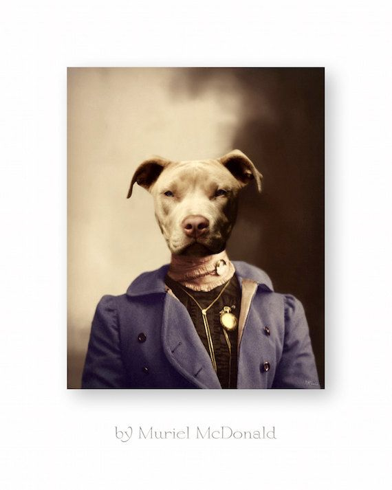Dog Art Print Pitbull Animal Art by WatchfulCrowArts on Etsy