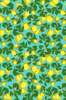 citrus by farmrio