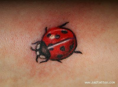 Although I dislike ladybugs, I would defiantly consider getting a ladybug tattoo for my niece.
