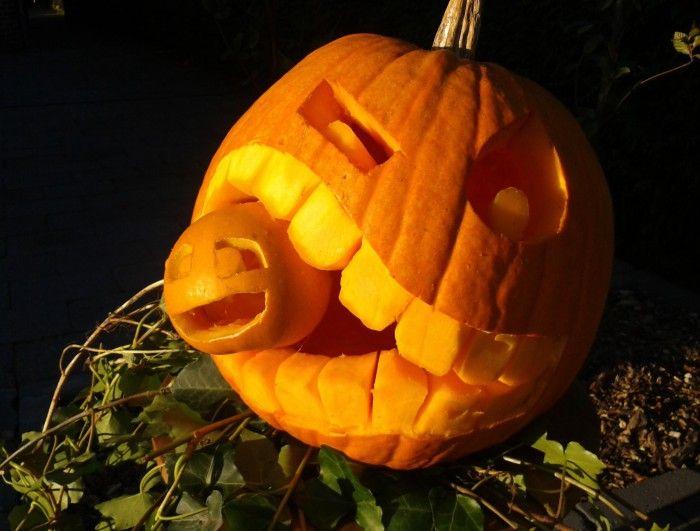 Halloween 2013, de foto spreekt voor zich. We hebben veel leuke reacties gekregen op deze pompoenen!