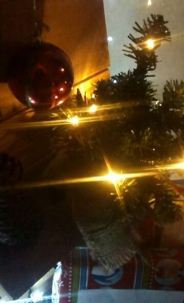 Small tree with lights , sits on bottom shelf of our pallet tree , another bargain $5 from recycle shop