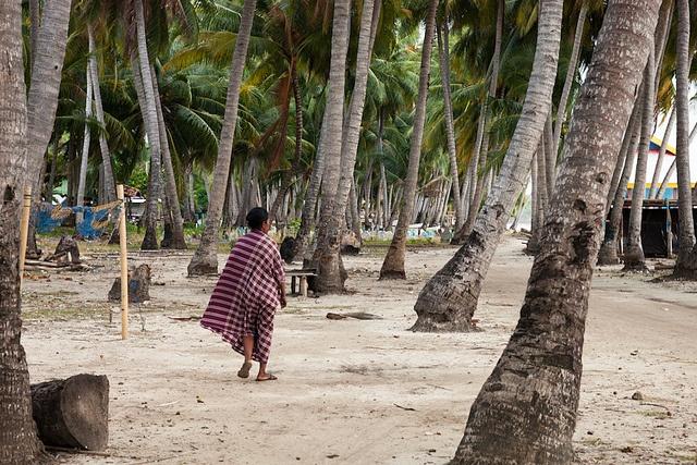 Palm grove, Bira, via Flickr.