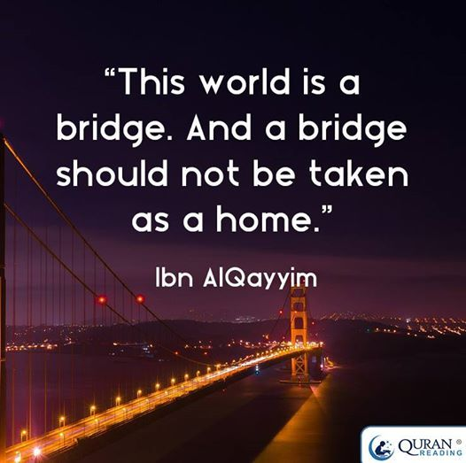 World is bridge