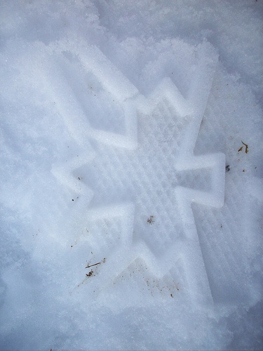 Patriotic Footstep - S. Frail photo by Queens County, via Flickr