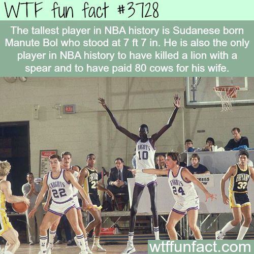 Tallest player in the history of NBA -  WTF fun facts
