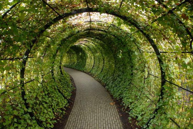 Castelo de Alnwick | Embora o primeiro jardim reporte a 1750, as suas actuais valências ...