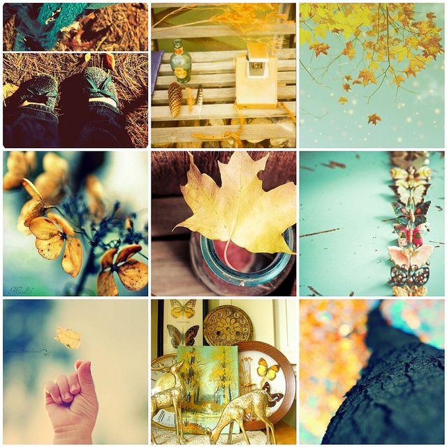AutumnAutumn Company Picnics, Autumn Picn Preparing, Autumn Summe Picnics, Summer Picnics, Autumn Picn Summer, Autumn Fall, Autumn Picn Company, Picnics Summer, Autumn Preparing