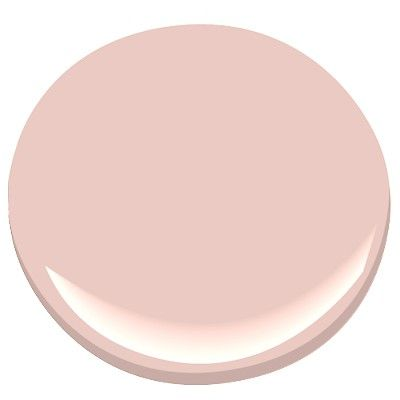benjamin moore rose blush 037 Arden accent wall in eggshell finish