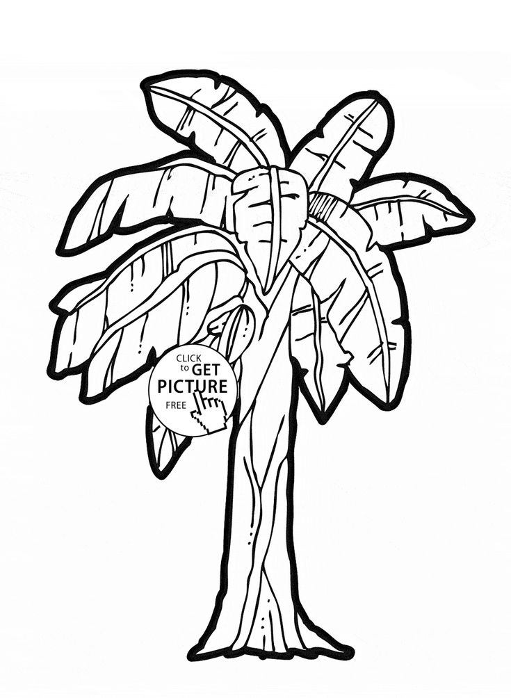 Banana Tree fruit coloring page