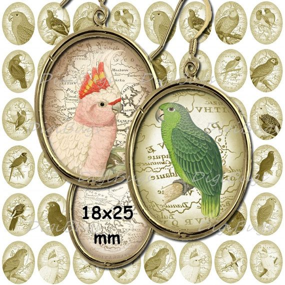 Printable Parrot Images, Digital Collage Sheet, 18 x 25 mm Ovals, Old Map, Earring Images, Parrot Pendant Images, Printable Download a2