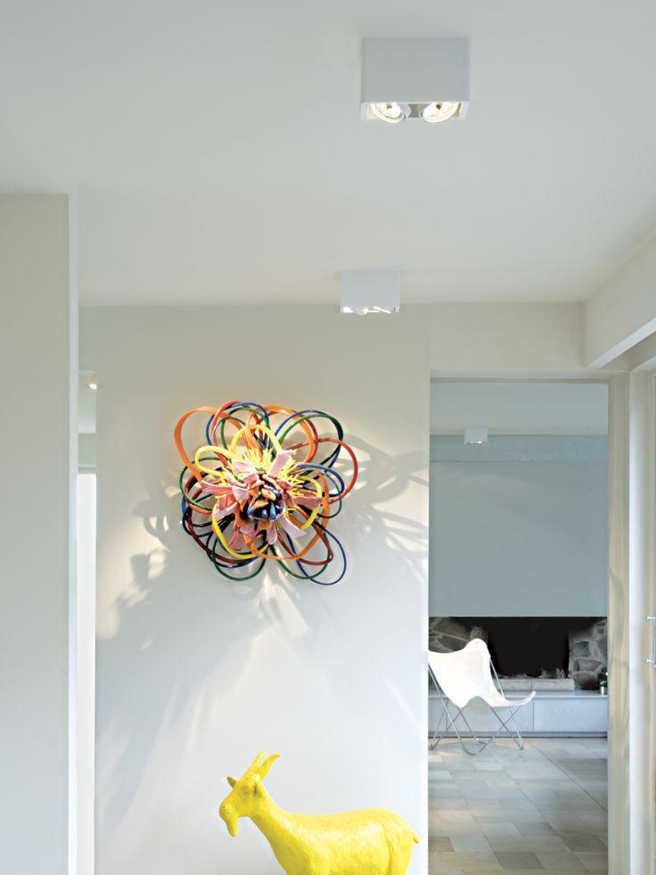 Spot orientable pour plafond R70 UP - Trizo21