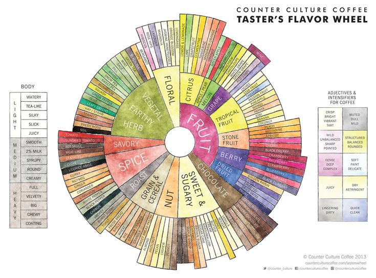 flavour wheel counter culture coffee