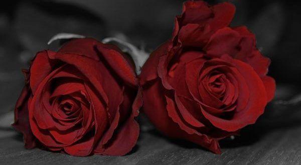 Jaki prezent Walentynkowy podarować kobiecie? #walentynki #prezent