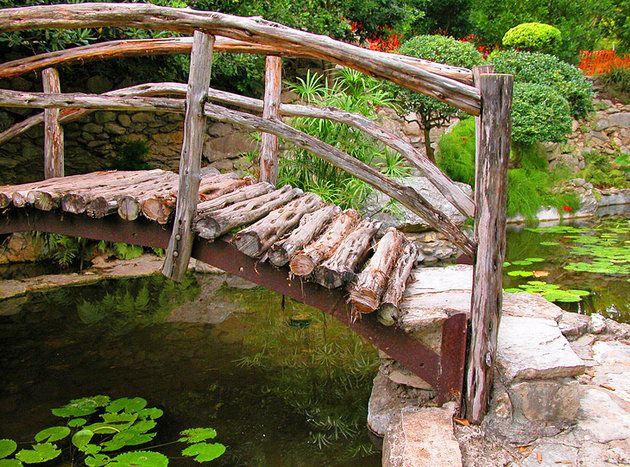 Zilker Metropolitan Park and Botanical Garden Tourist