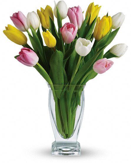 http://www.flowerwyz.com/valentines-day-flowers-valentines-flowers-delivery.htm valentine flowers