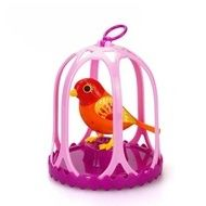 Set colivie si pasare interactiva DigiBirds Twinkle