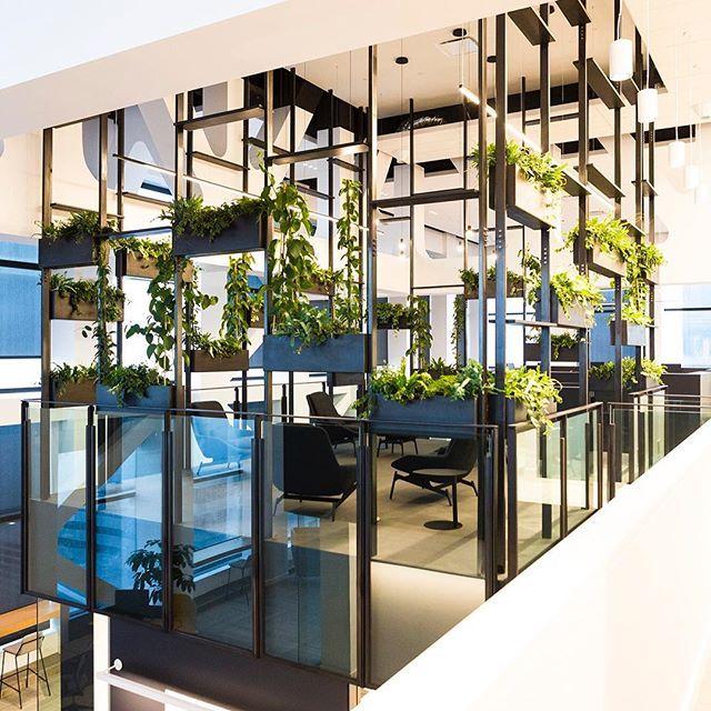 60 best our landscape design images on pinterest for Design consultancy boston