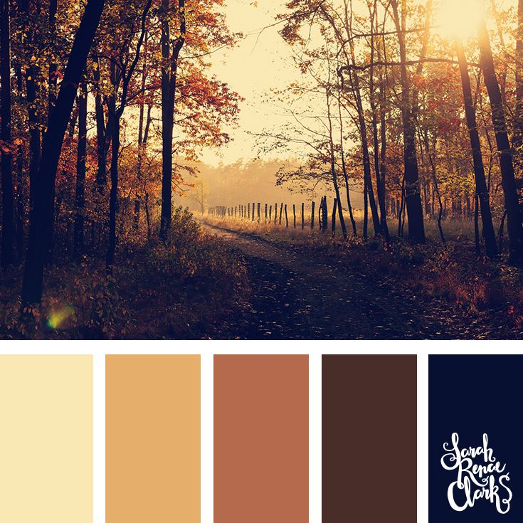 Beautiful Autumn color scheme | Click for more fall color combinations, mood boards and seasonal color palettes at http://sarahrenaeclark.com #color #colorscheme #colorpalette