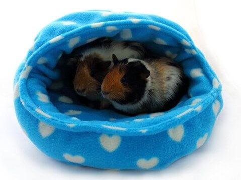 Guinea pig snuggle pod free sewing tutorial small animal holder