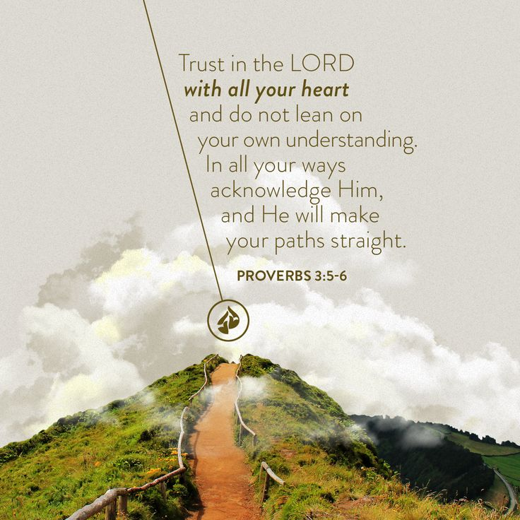 Trust in the LORD with all your heart and do not lean on your own understanding. In all your ways acknowledge Him, and He will make your paths straight. —Proverbs 3:5-6