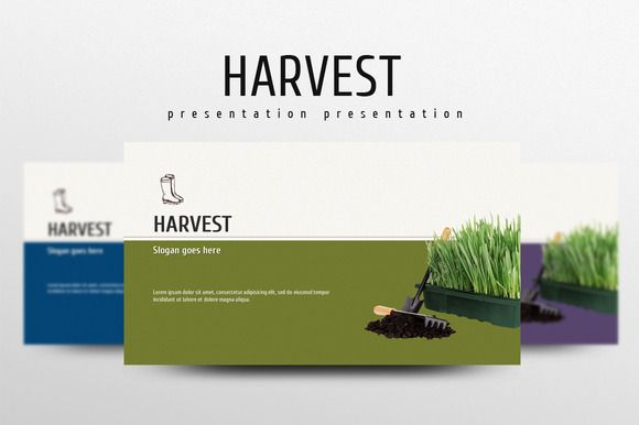 Harvest by Good Pello on @creativemarket