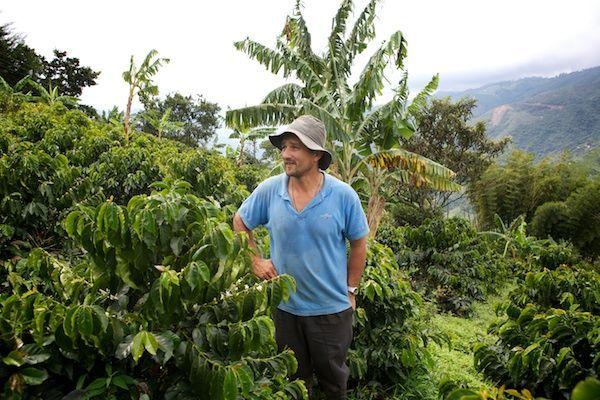 Das ist Jhon Jairo Escobar, einer unserer Kaffeebauern, zwischen seinen Kaffeesträuchern