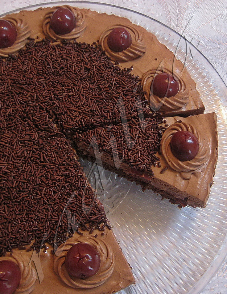 Lud Lab Cake (Hungarian Chocolate Cake with Sour Cherries)