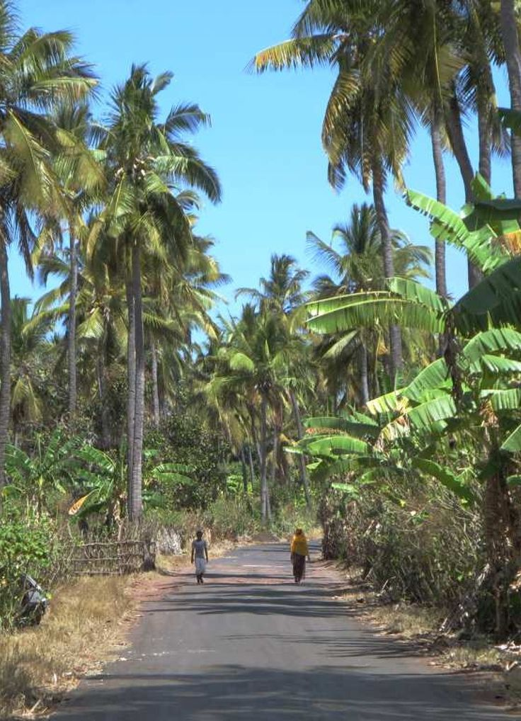 Highway Around Grande Comore (Comoros Islands)