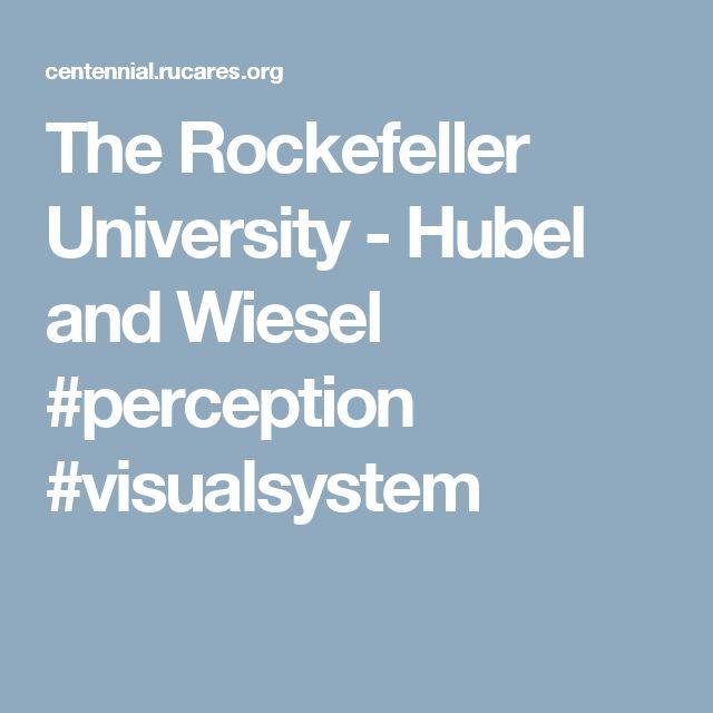 The Rockefeller University - Hubel and Wiesel    #perception #visualsystem