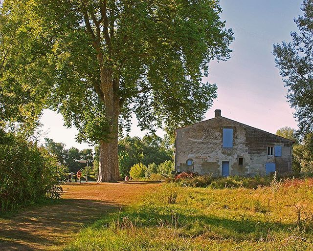 Weekend getaway #5 #campagne #abandoned #stillness #tree_magic #tree_brilliance #tree_captures #treescollection #theoutbound #naturelovers #ig_naturelovers #nature #countryside #countrylife #country_features #adventure #house #wanderlust #igersfrance #french #bordeaux #france #beautifuldestinations #worldcaptures #summer