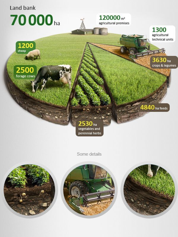Part of a bigger info graphic, but love the photo-realistic version of a pie chart on top!  Agricultural infographics + Tutorial by Anton Egorov, via Behance