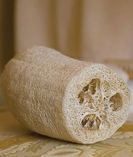 Gourd, Orn Luffa- Grown for its fibrous flesh which, when dried, makes the best bath sponges ever!............i should plant some!