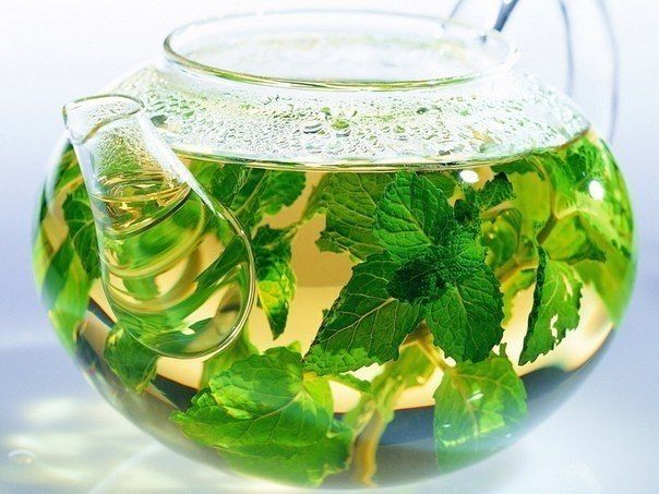 БЛОГ ПОЛЕЗНОСТЕЙ: Травяные, цветочные и ягодные чаи – когда их пить и чем они полезны?
