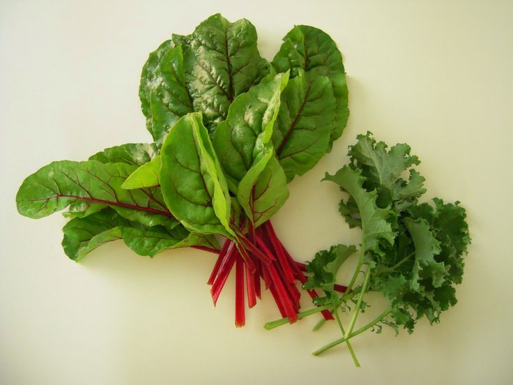 Red Four Forty Two Swiss chard and kale