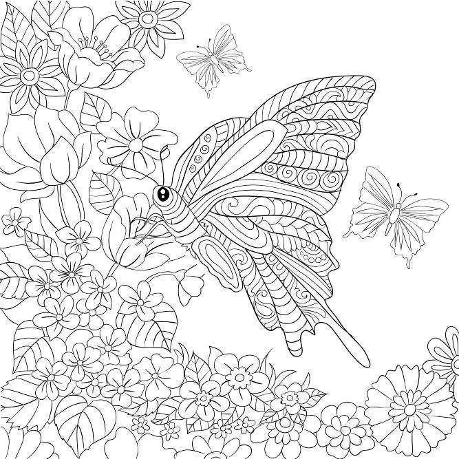 269 Best Images About Coloring Pages To Print