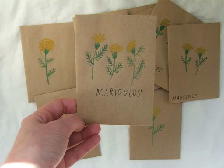 Make your own seed packets to give away!