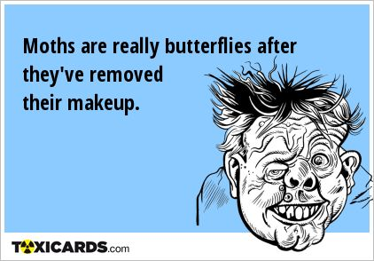 Moths are really butterflies after they've removed their makeup.