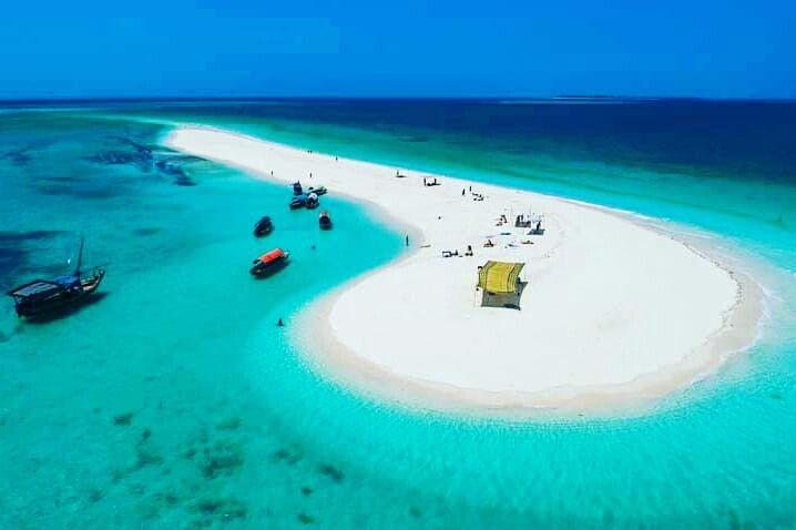 Nakupenda Sand Bank Zanzibar Trip Tours