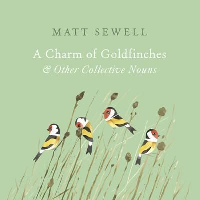 Focusing-on-the-theme-of-collective-nouns-for-animals-this-title-includes-a-charm-of-goldfinches-an-ascension-of-larks-a-school-of-dolphins-a-cloud-of-bats-a-murder-of-crows-Illustrated-with-watercolours-it-is-a-suitable-gift-for-nature-and-art-lovers