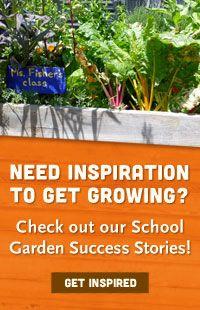 Whole Kids Foundation - Schools - School Garden Program