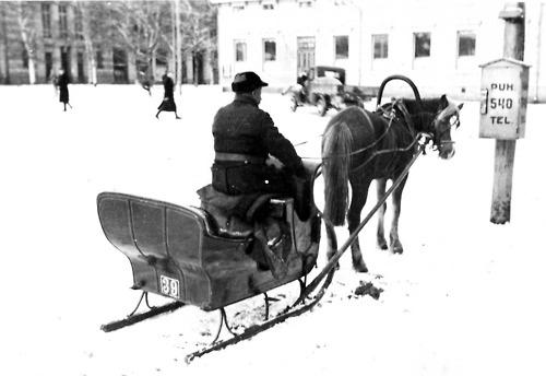 A taxi sleigh in Vaasa, Finland, 1920s.