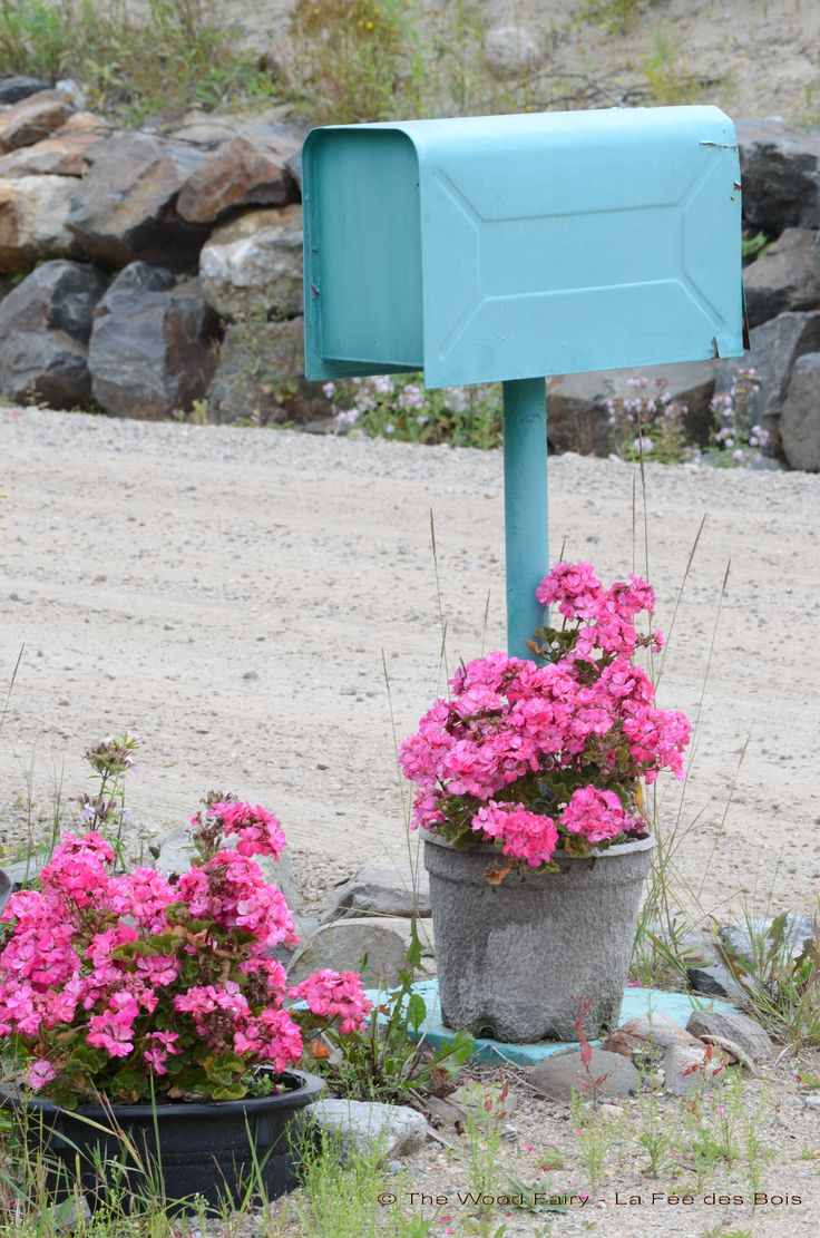 Country Mail Box