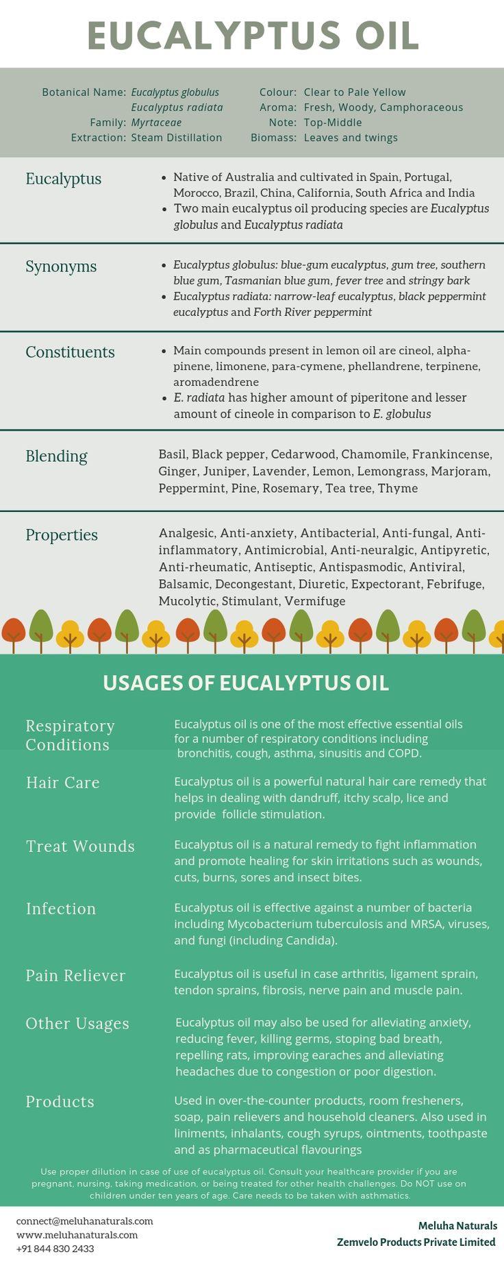 Eucalyptus Oil Guide Benefits, Properties