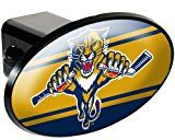 Florida Panthers Trailer Hitch