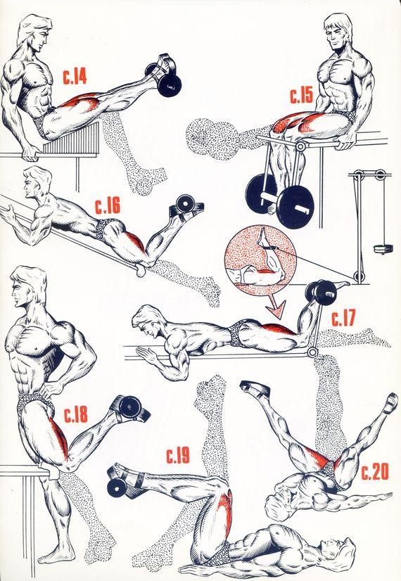 Les 25 meilleures id es concernant jambes de tueur sur for Exercices pour interieur des cuisses