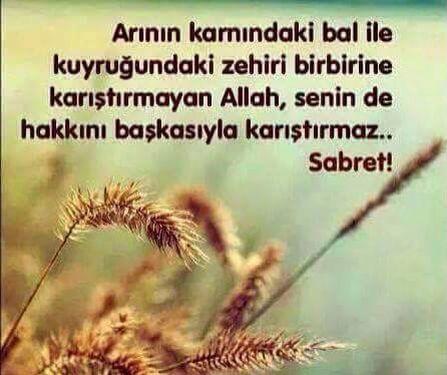 ..#jannah #islamicquotes #prayer #sunnah #allahhuakbar #islam #alhamdulillah #subhanallah #paradise #tasavvuf #günaydın #islamic #tefekkür #selam #muhammed #istanbul #dua #peygamber #müslim #ibadet #muslima #muslim #quran #allah #quotes #notes #words #motto