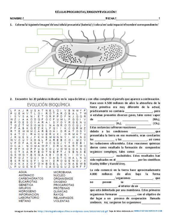 289 best escuela images on Pinterest Healthy living, Spanish and - new tabla periodica en blanco y negro pdf